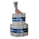 Just for Boys Organic Cloth Diaper Cake